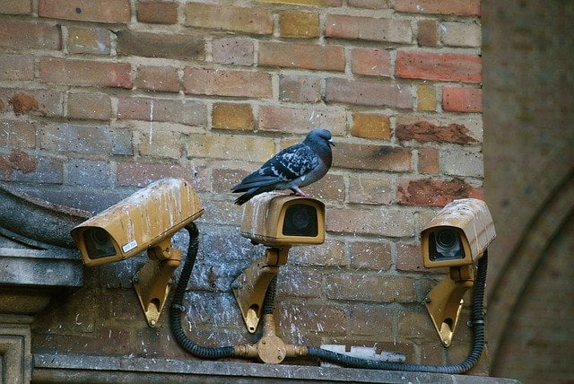 videonadzorne kamere